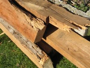 houtworm-bestrijding-houtenbalken